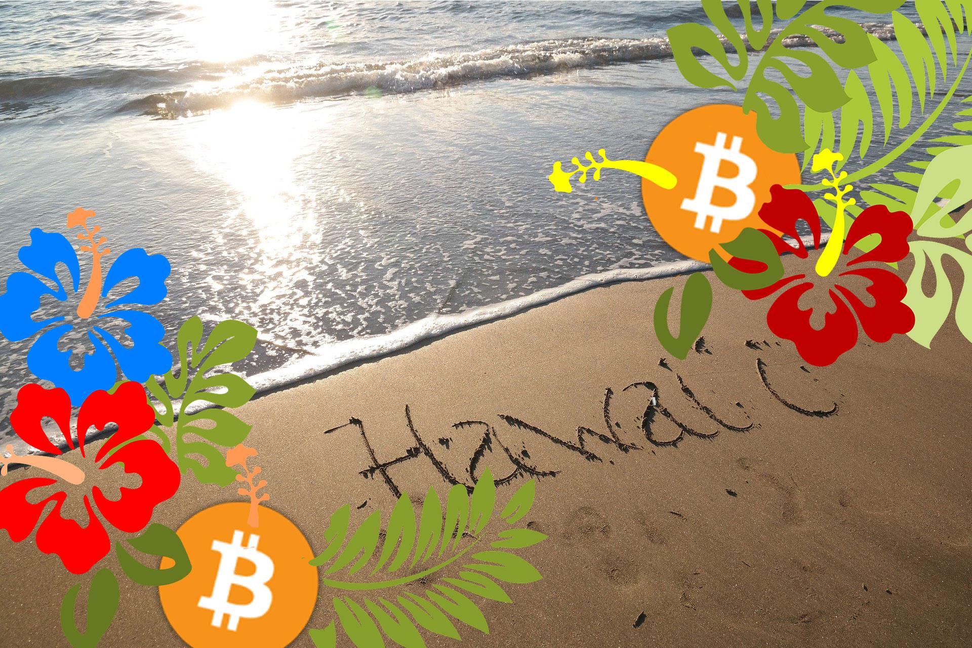 ハワイの銀行で仮想通貨カストディサービスできるようになるのか!?