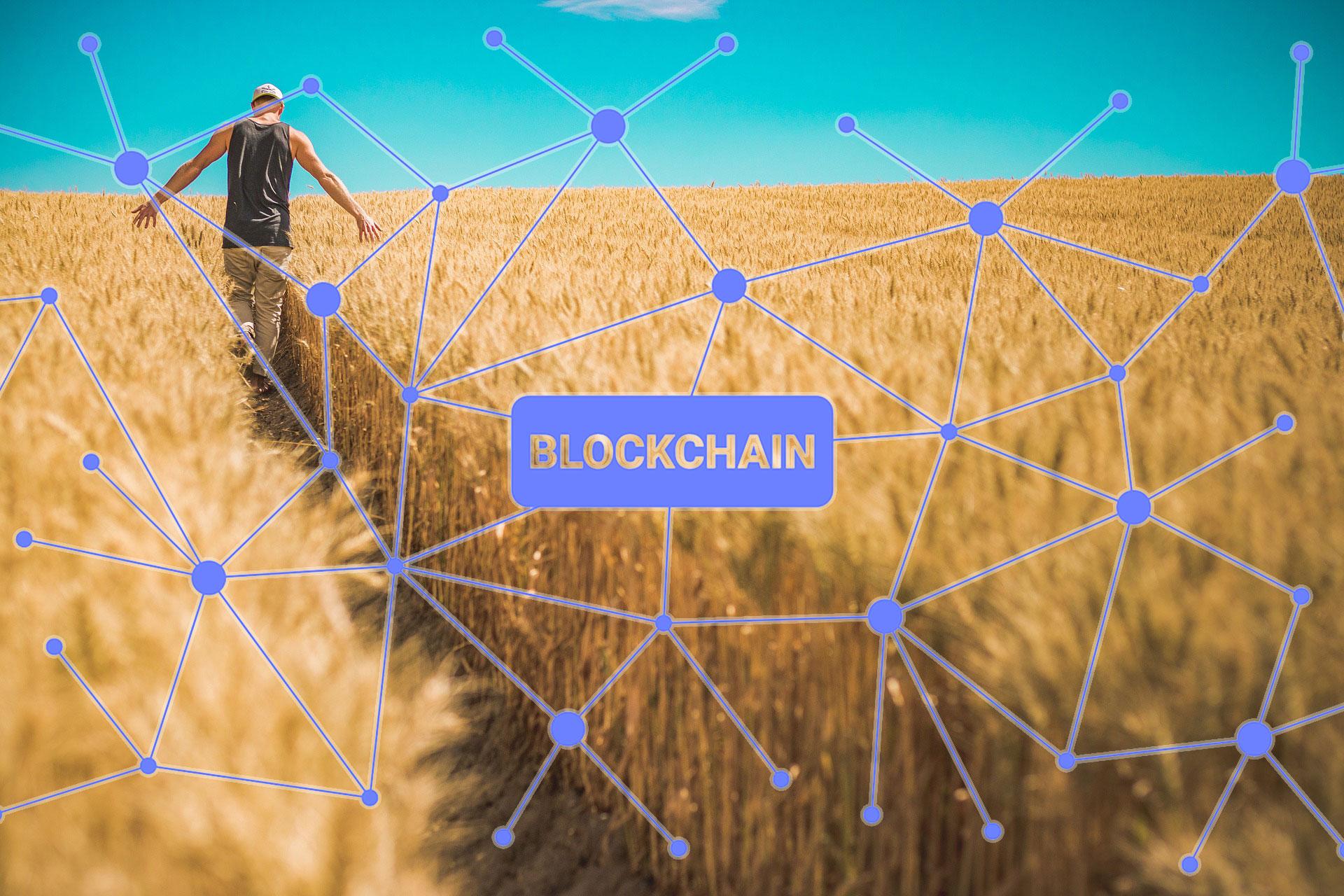Covantisがブロックチェーン企業ConsenSysと提携、農産物貿易の近代化へ