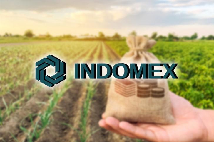 INDOMEX(インドメックス)の詳細・特徴とは?