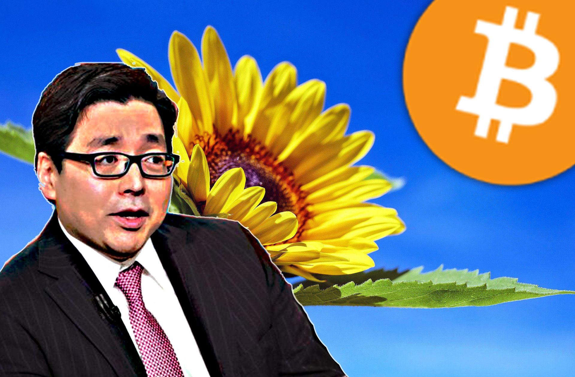 トム・リー、今後6か月でビットコインの価格が200%近く上昇する理由を説明!