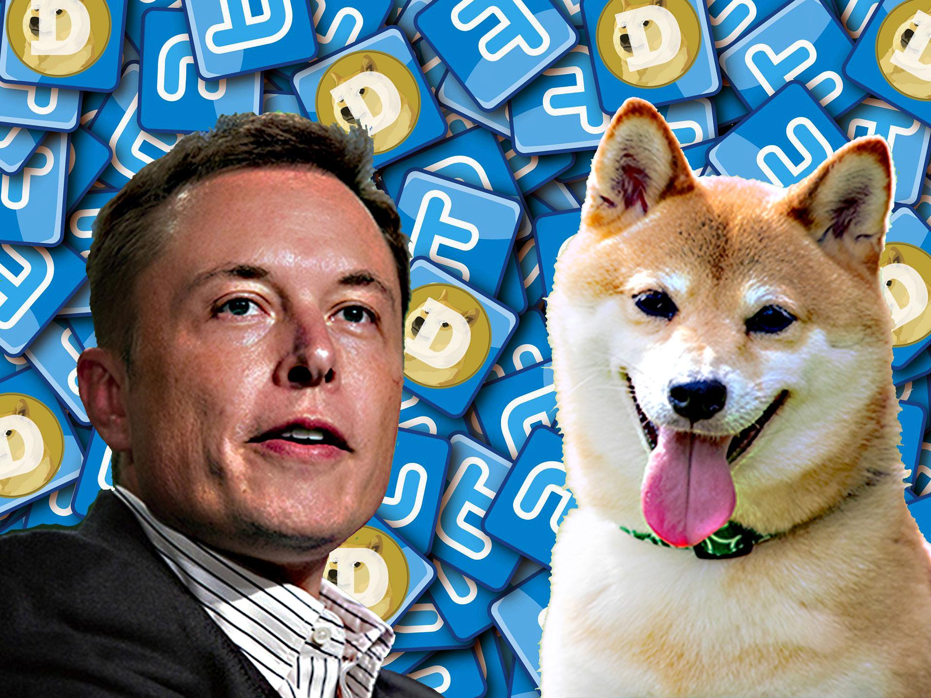 イーロン マスク氏、再び「仮想通貨Dogecoin」についてツイート!