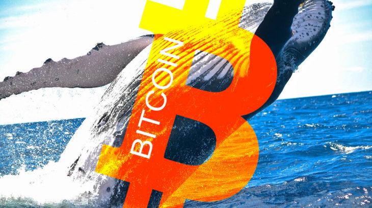 サトシナカモトが109億ドルのBTCを採掘し51%攻撃からブロックチェーンを保護!ホエールアラート
