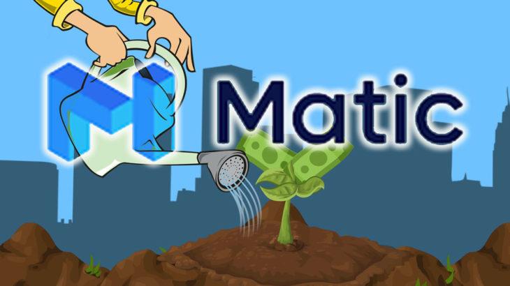 EthereumサイドチェーンMaticが500万ドルのDeFiプロジェクトインキュベーションファンドをローンチ!