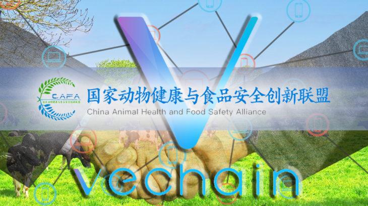VeChain、中国の「国家動物健康・食品安全創新連盟」に参加!130を超える企業に技術提供